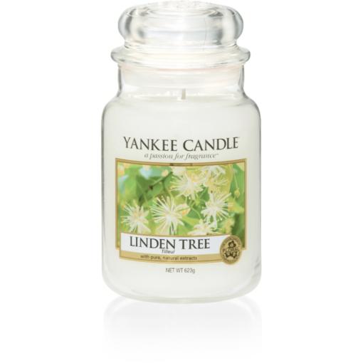 linden tree large jar