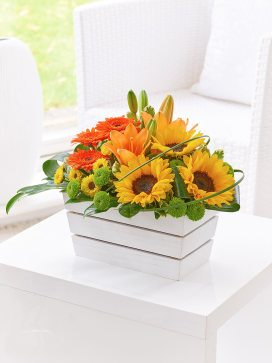 lily germini and sunflower arr